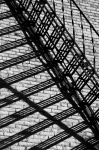 Shadow Escape