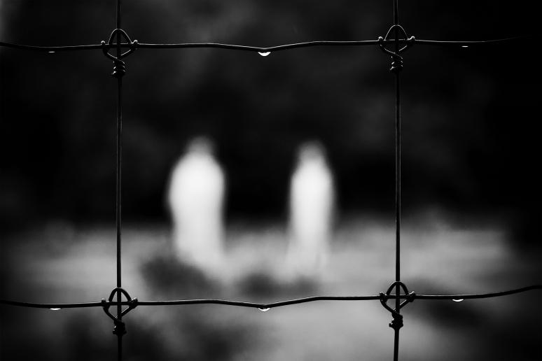 © Davuid Guidas