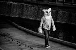 Fur Walking