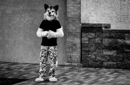 Fur Watching