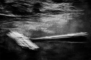 """Floating Sticks"" © David Guidas"