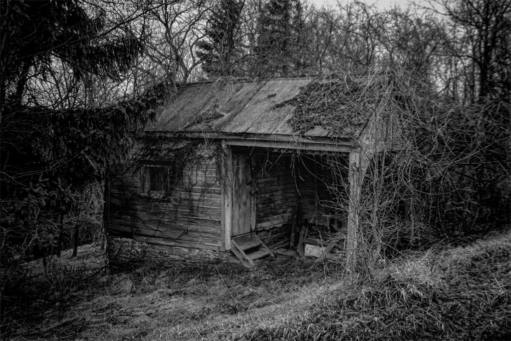 Tiny House_sm