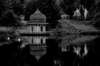swan-lake