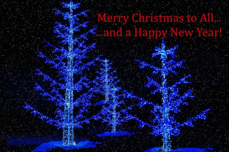 Christmas Trees_sm